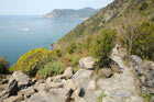 Photo from the walk - Vernazza to Corniglia by the coast path
